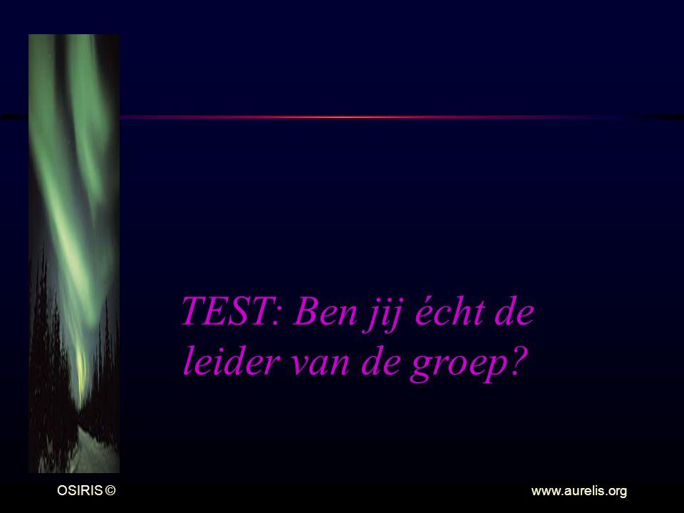TEST: Ben jij écht de leider van de groep