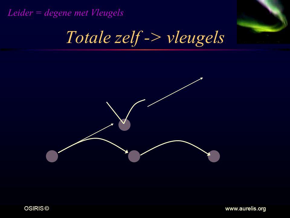 Totale zelf -> vleugels