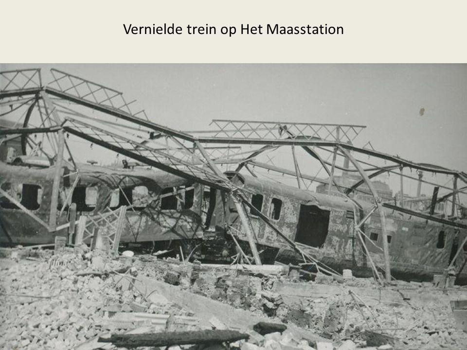 Vernielde trein op Het Maasstation