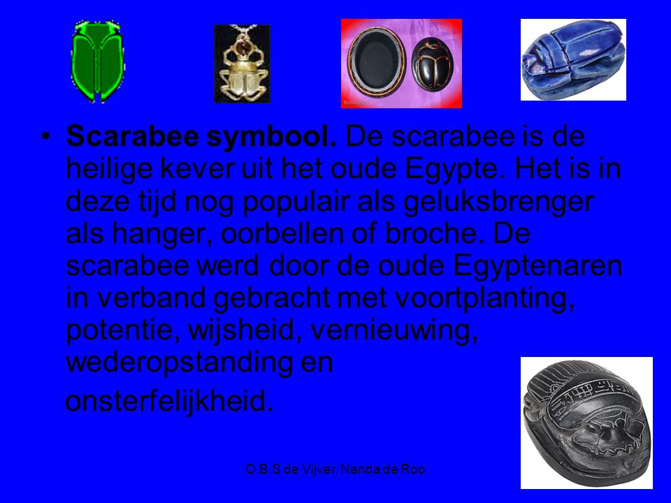 O.B.S de Vijver, Nanda de Roo