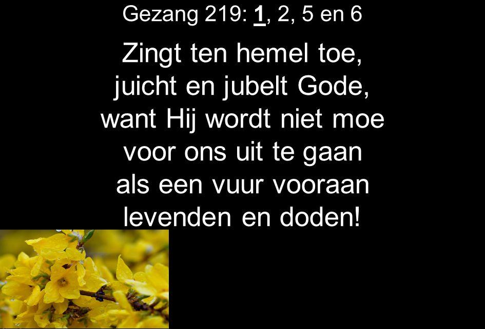Zingt ten hemel toe, juicht en jubelt Gode, want Hij wordt niet moe