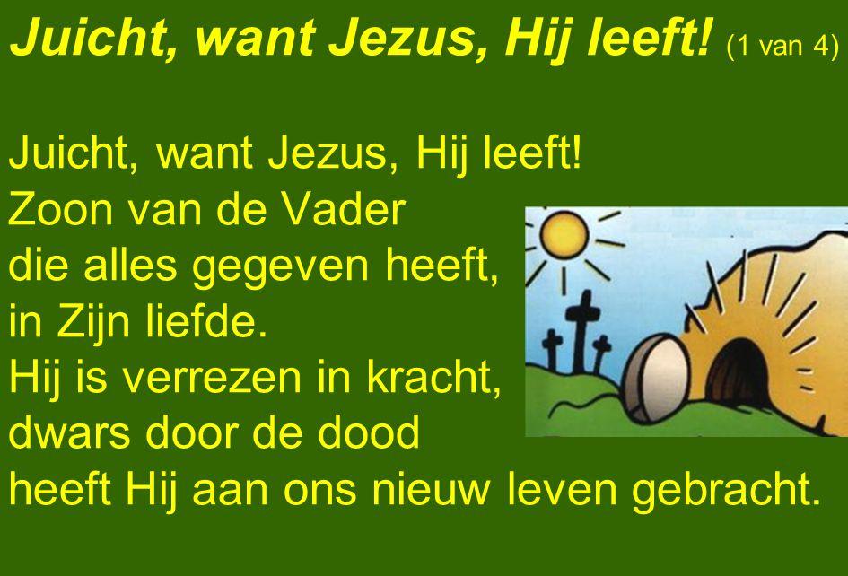 Juicht, want Jezus, Hij leeft! (1 van 4)