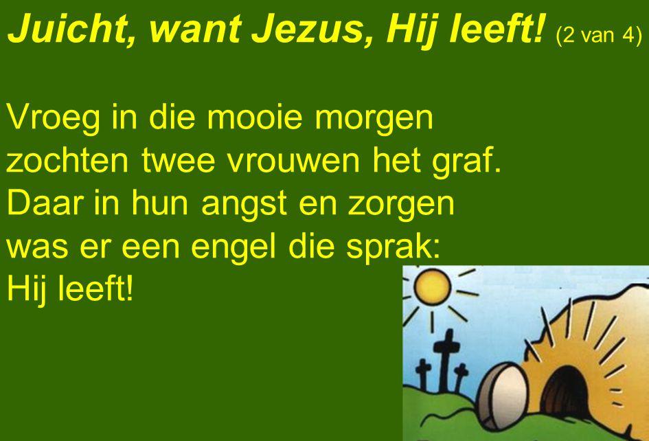 Juicht, want Jezus, Hij leeft! (2 van 4)