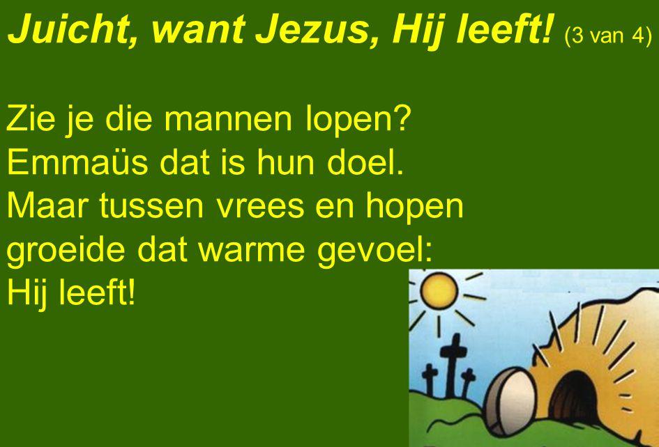 Juicht, want Jezus, Hij leeft! (3 van 4)