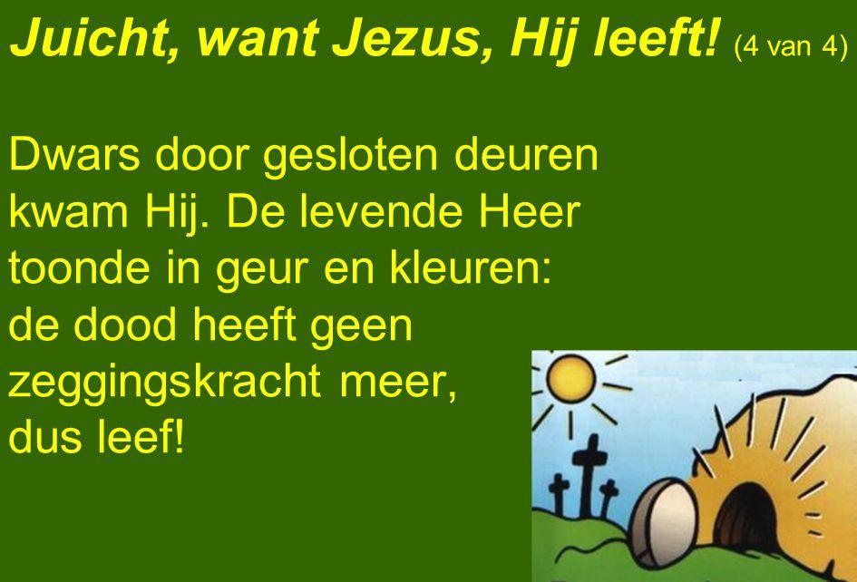 Juicht, want Jezus, Hij leeft! (4 van 4)