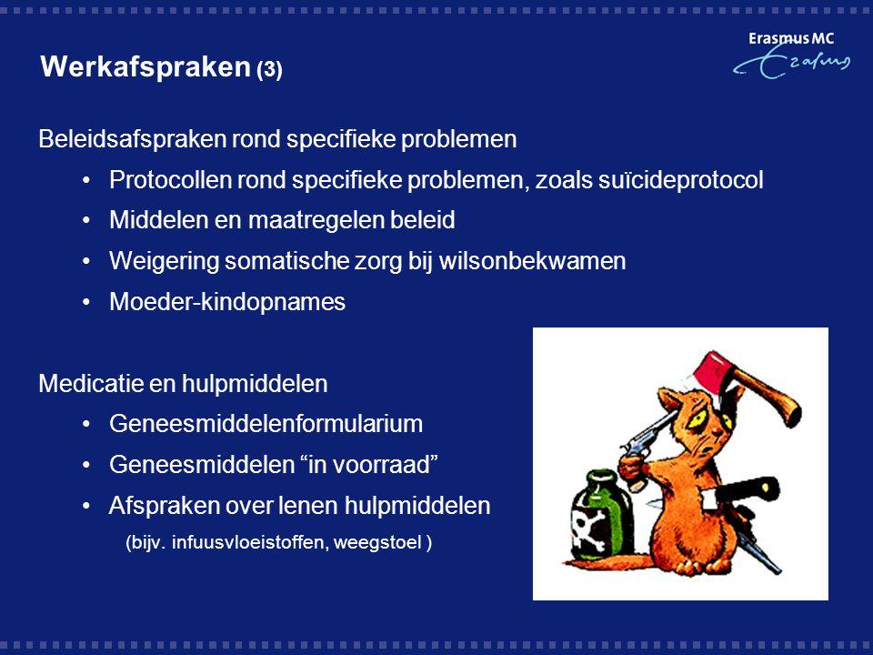 Werkafspraken (3) Beleidsafspraken rond specifieke problemen