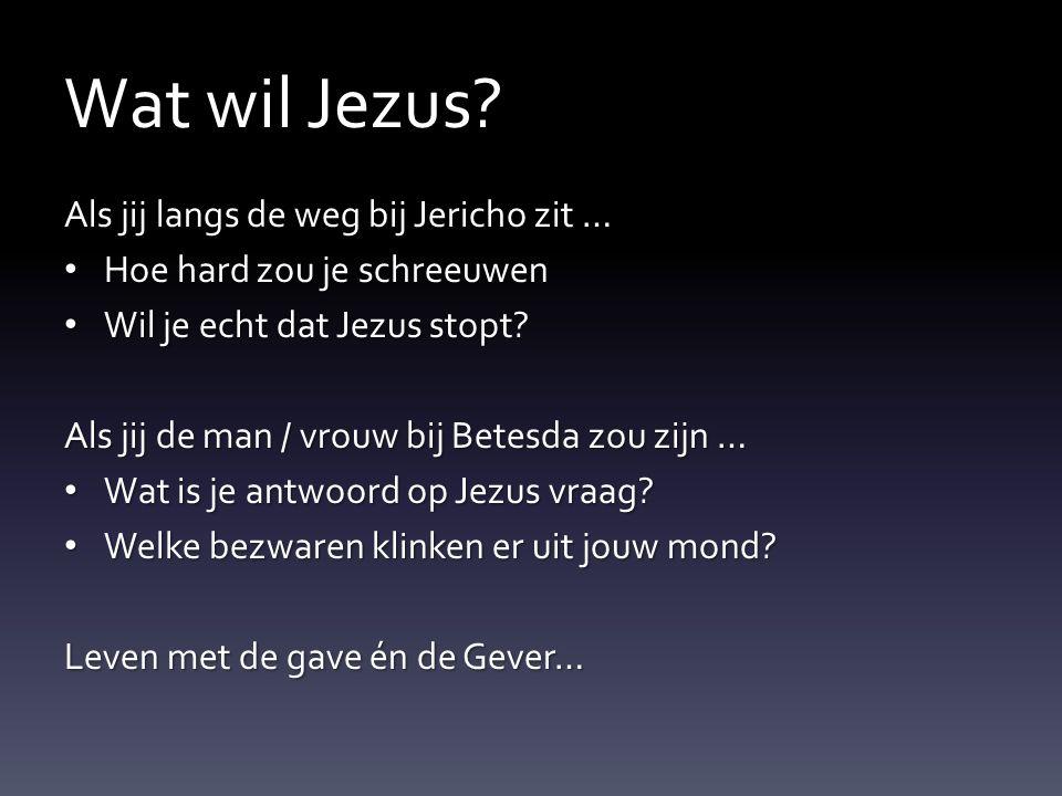 Wat wil Jezus Als jij langs de weg bij Jericho zit …