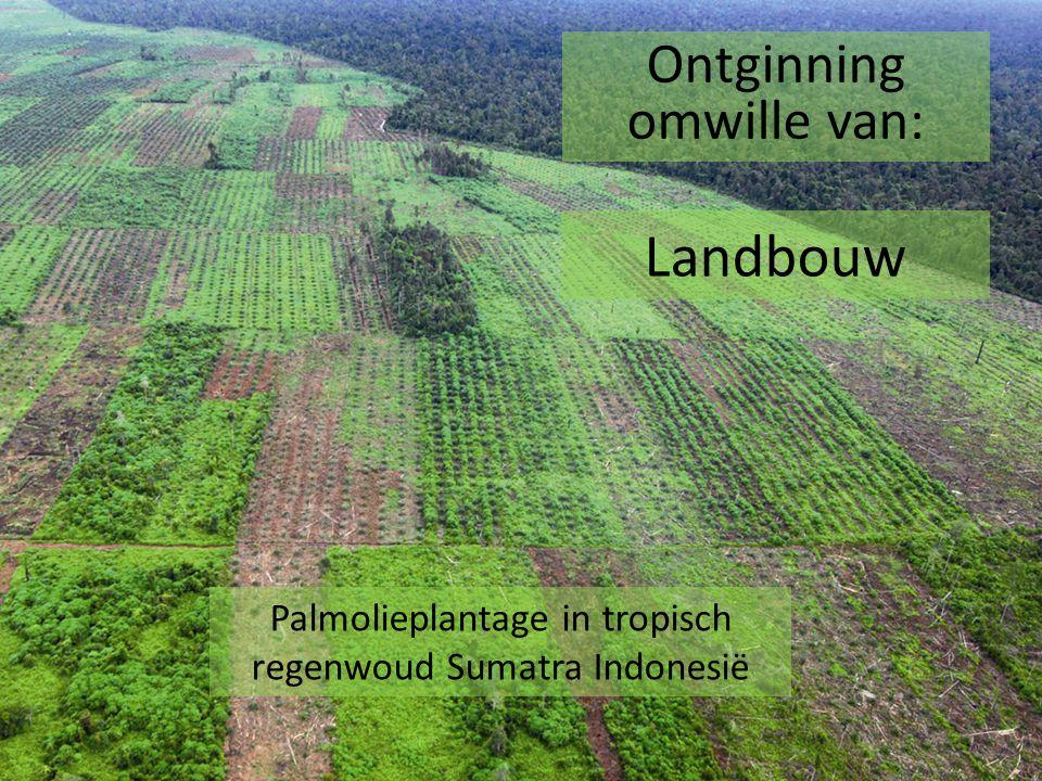 Landbouw Ontginning omwille van: