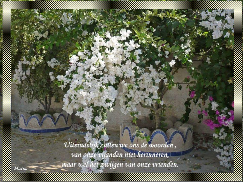 Uiteindelijk zullen we ons de woorden , van onze vijanden niet herinneren, maar wel het zwijgen van onze vrienden.