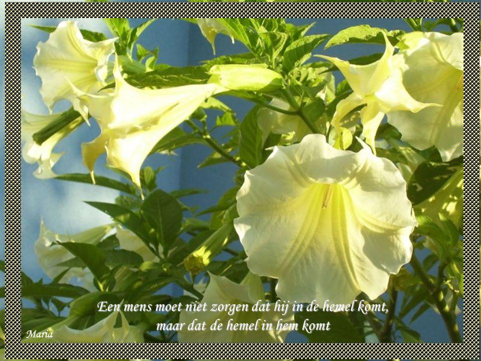 Een mens moet niet zorgen dat hij in de hemel komt, maar dat de hemel in hem komt