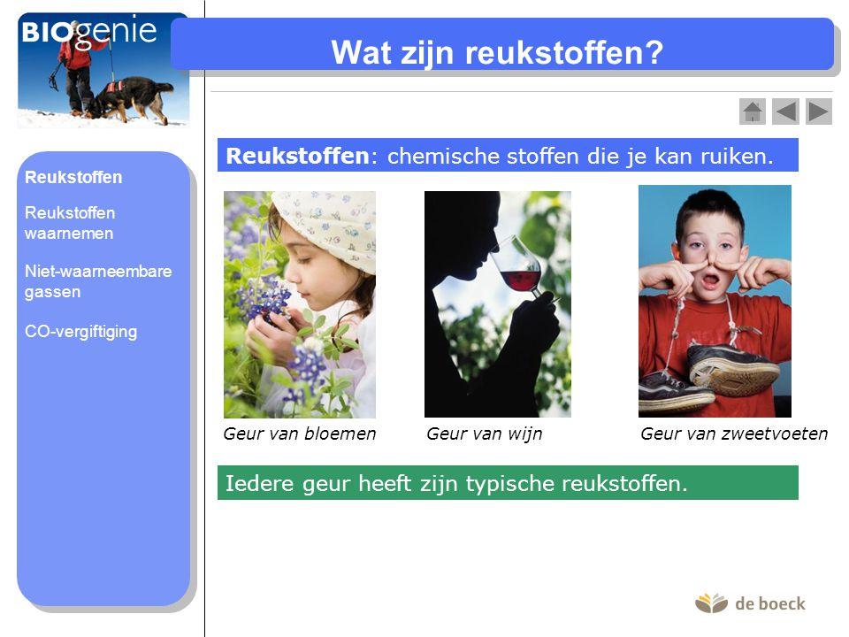 Wat zijn reukstoffen Reukstoffen: chemische stoffen die je kan ruiken. Reukstoffen. Geur van zweetvoeten.