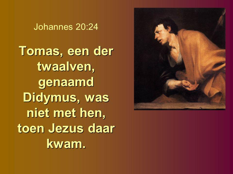 Johannes 20:24 Tomas, een der twaalven, genaamd Didymus, was niet met hen, toen Jezus daar kwam.