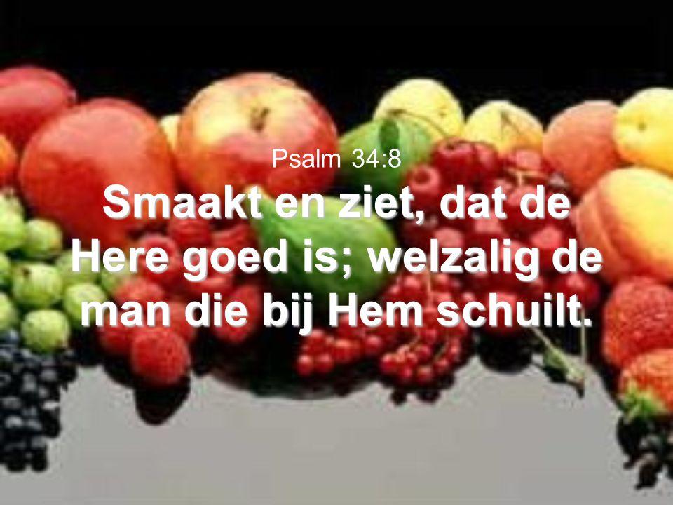 Psalm 34:8 Smaakt en ziet, dat de Here goed is; welzalig de man die bij Hem schuilt.