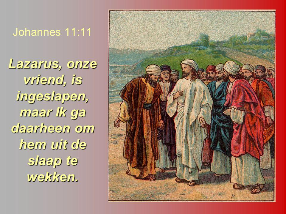 Johannes 11:11 Lazarus, onze vriend, is ingeslapen, maar Ik ga daarheen om hem uit de slaap te wekken.