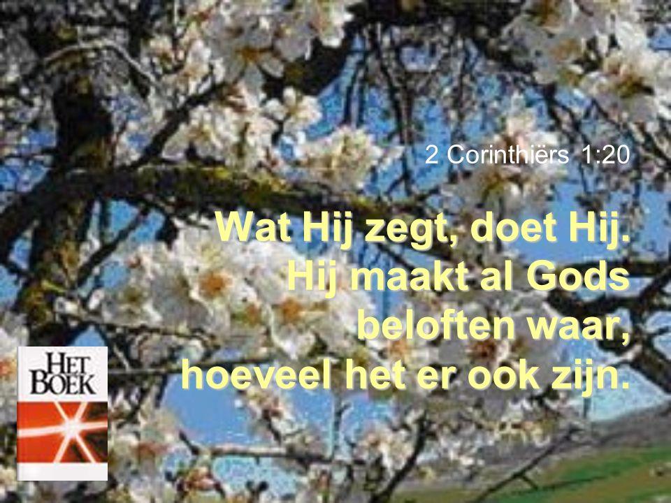 2 Corinthiërs 1:20 Wat Hij zegt, doet Hij