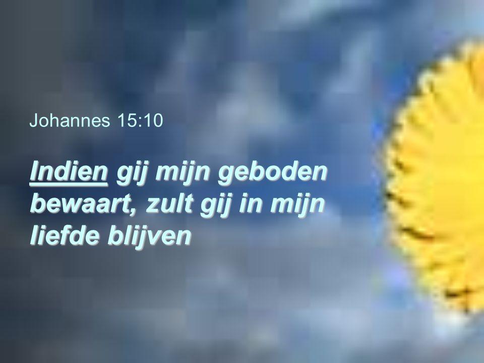 Johannes 15:10 Indien gij mijn geboden bewaart, zult gij in mijn liefde blijven