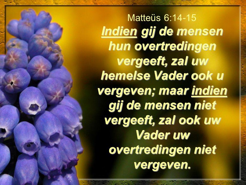 Matteüs 6:14-15 Indien gij de mensen hun overtredingen vergeeft, zal uw hemelse Vader ook u vergeven; maar indien gij de mensen niet vergeeft, zal ook uw Vader uw overtredingen niet vergeven.
