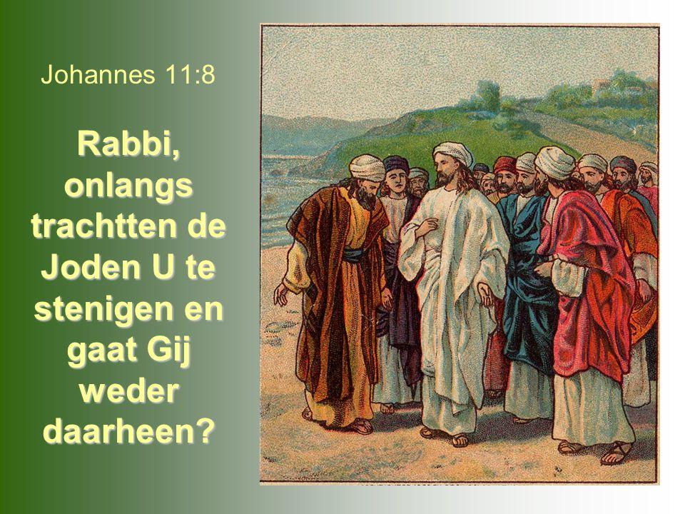Johannes 11:8 Rabbi, onlangs trachtten de Joden U te stenigen en gaat Gij weder daarheen