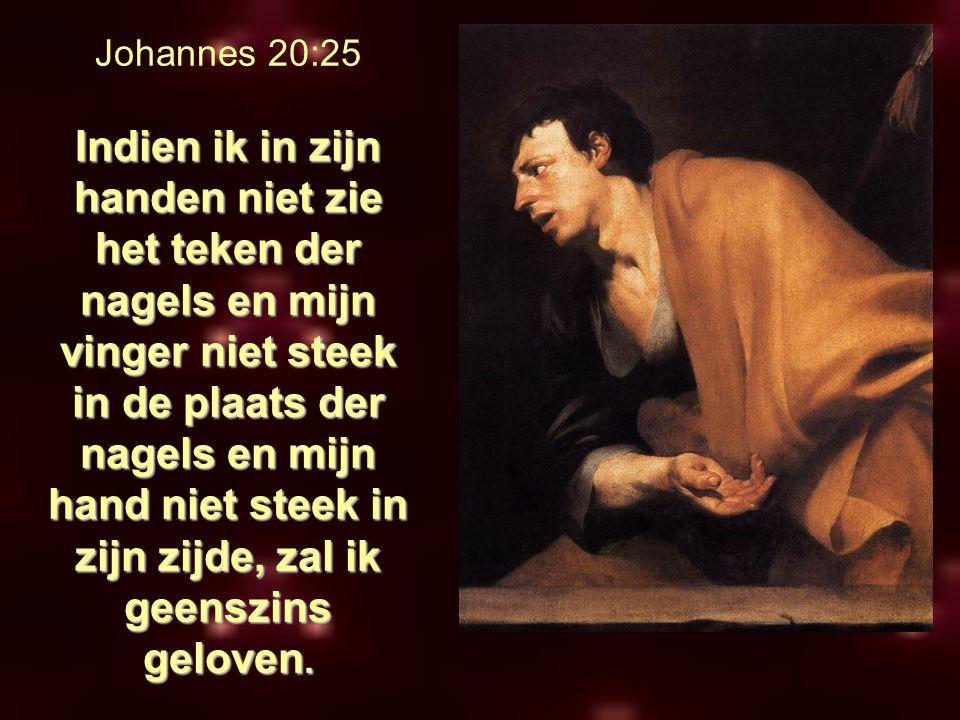 Johannes 20:25 Indien ik in zijn handen niet zie het teken der nagels en mijn vinger niet steek in de plaats der nagels en mijn hand niet steek in zijn zijde, zal ik geenszins geloven.