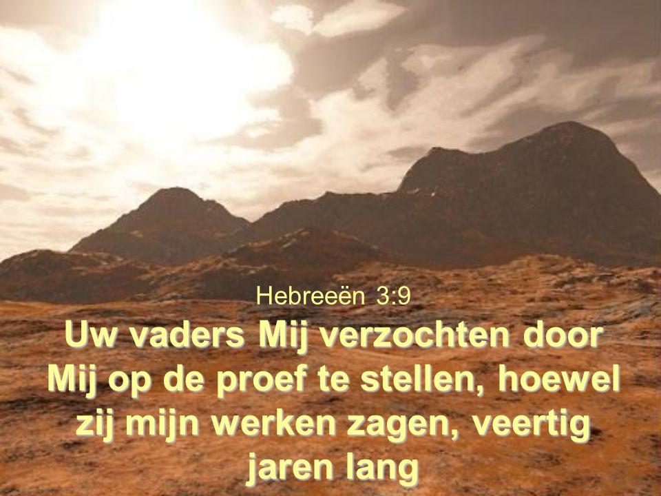 Hebreeën 3:9 Uw vaders Mij verzochten door Mij op de proef te stellen, hoewel zij mijn werken zagen, veertig jaren lang