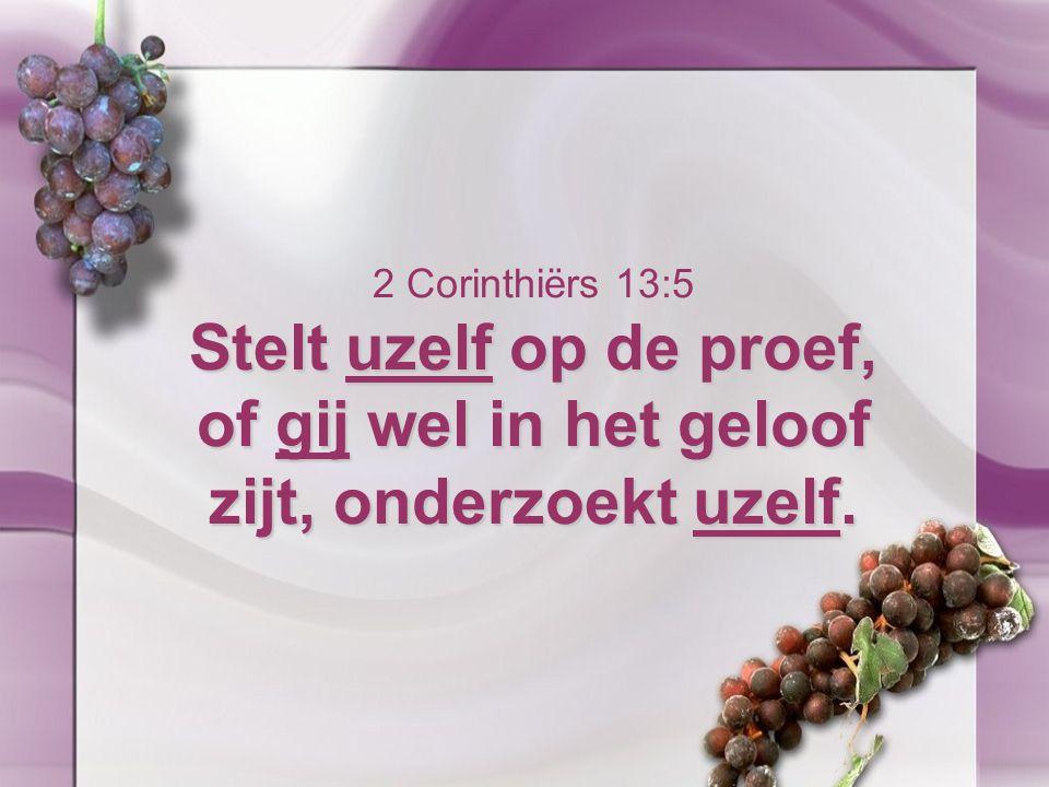 2 Corinthiërs 13:5 Stelt uzelf op de proef, of gij wel in het geloof zijt, onderzoekt uzelf.