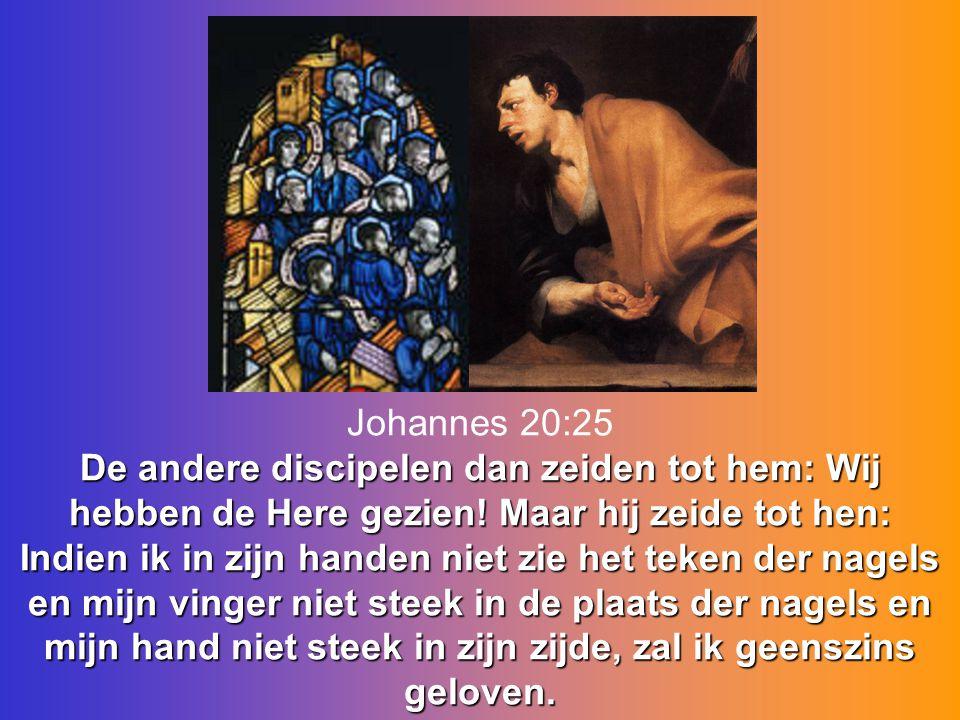 Johannes 20:25 De andere discipelen dan zeiden tot hem: Wij hebben de Here gezien.
