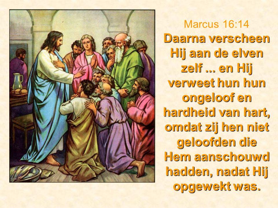 Marcus 16:14 Daarna verscheen Hij aan de elven zelf