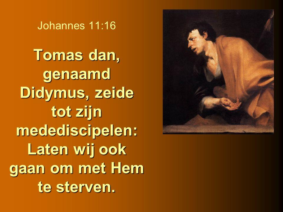 Johannes 11:16 Tomas dan, genaamd Didymus, zeide tot zijn medediscipelen: Laten wij ook gaan om met Hem te sterven.