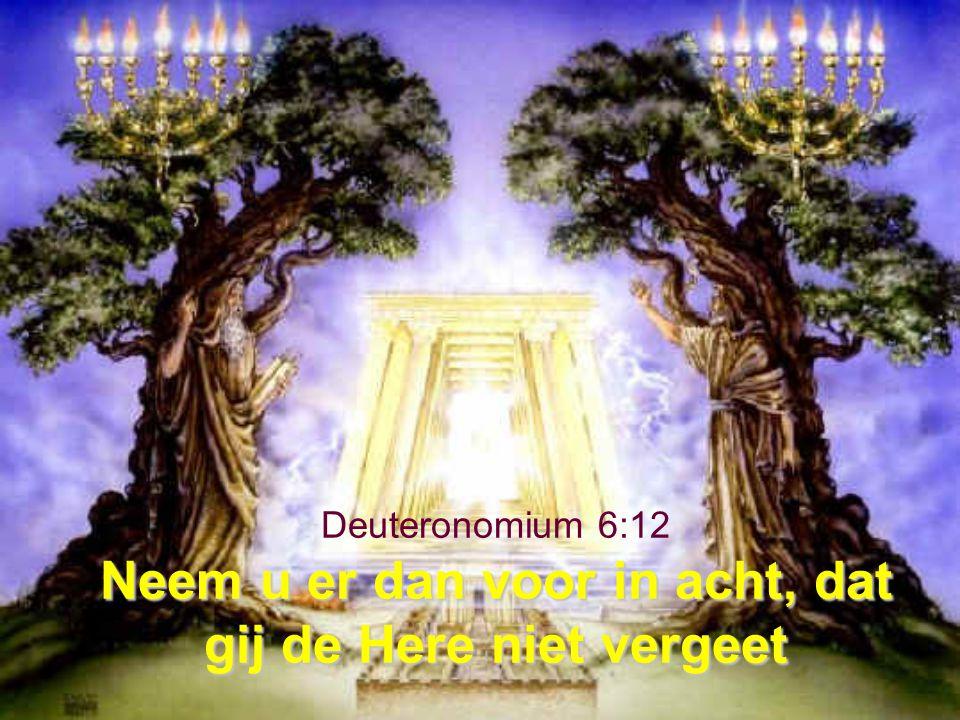 Deuteronomium 6:12 Neem u er dan voor in acht, dat gij de Here niet vergeet