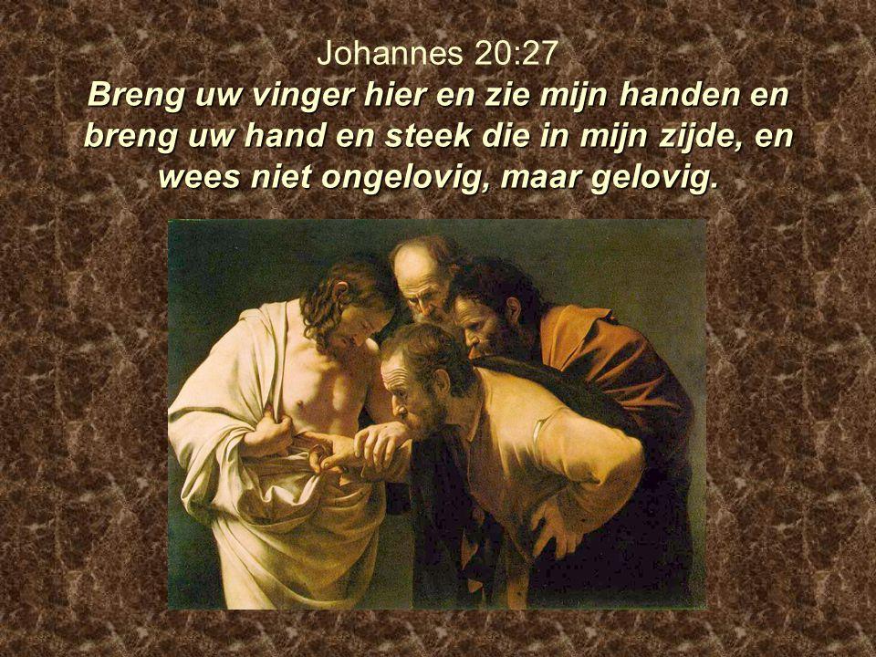 Johannes 20:27 Breng uw vinger hier en zie mijn handen en breng uw hand en steek die in mijn zijde, en wees niet ongelovig, maar gelovig.