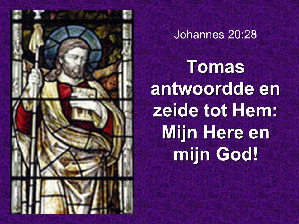Johannes 20:28 Tomas antwoordde en zeide tot Hem: Mijn Here en mijn God!
