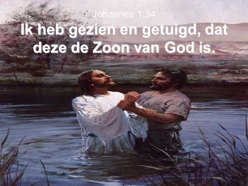 Johannes 1:34 Ik heb gezien en getuigd, dat deze de Zoon van God is.