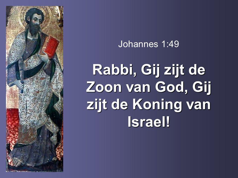 Johannes 1:49 Rabbi, Gij zijt de Zoon van God, Gij zijt de Koning van Israel!