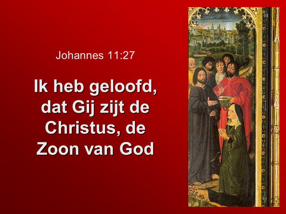 Johannes 11:27 Ik heb geloofd, dat Gij zijt de Christus, de Zoon van God