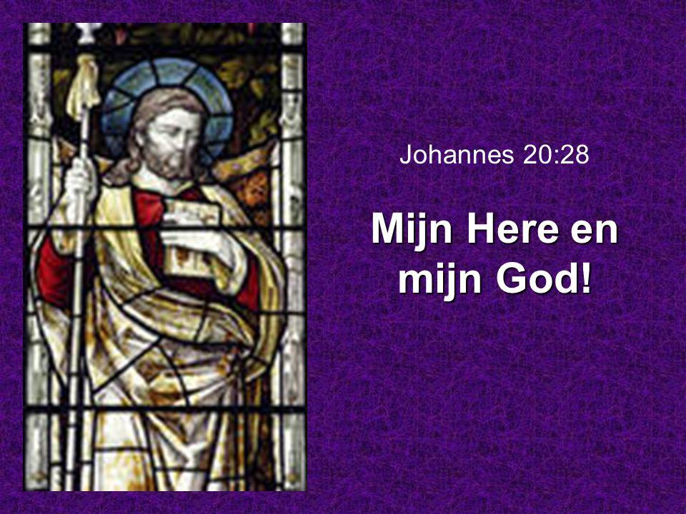 Johannes 20:28 Mijn Here en mijn God!