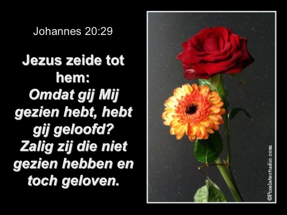 Johannes 20:29 Jezus zeide tot hem: Omdat gij Mij gezien hebt, hebt gij geloofd.