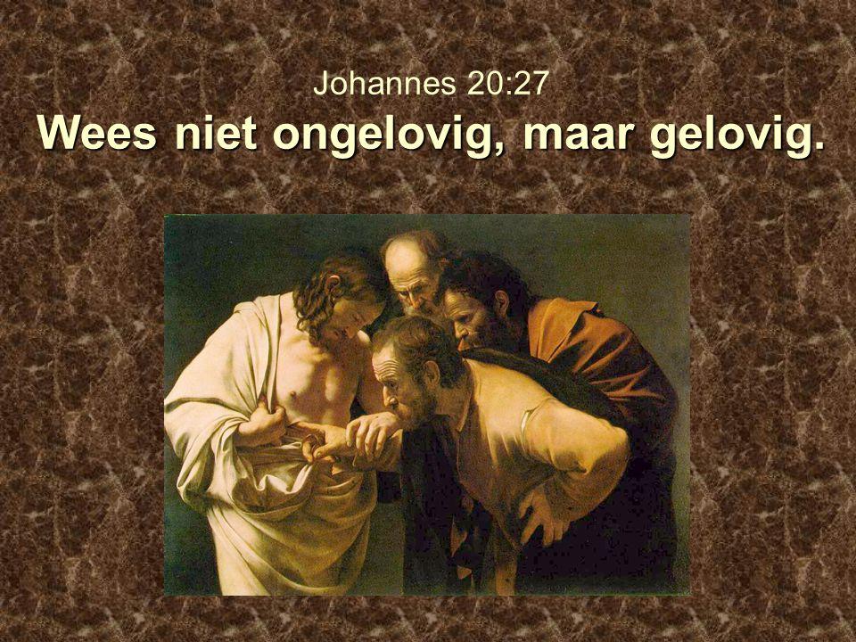 Johannes 20:27 Wees niet ongelovig, maar gelovig.