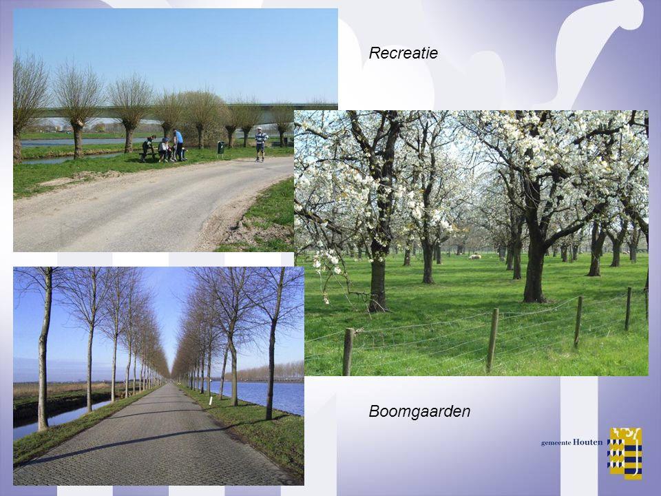 Recreatie Boomgaarden