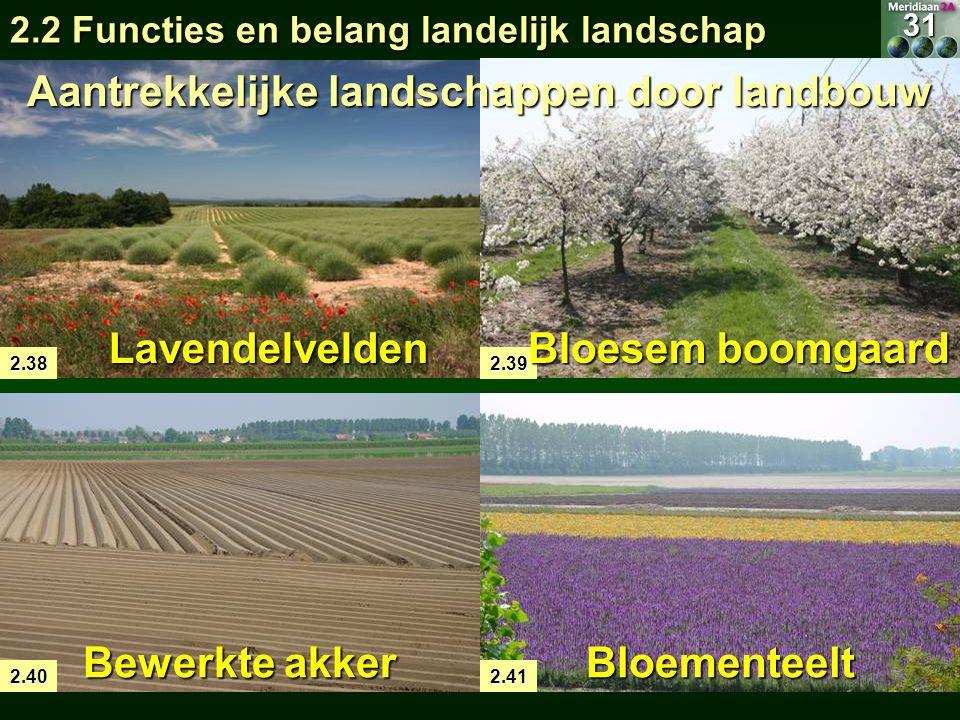 Aantrekkelijke landschappen door landbouw