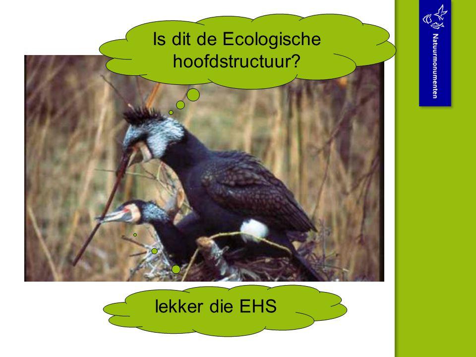 Is dit de Ecologische hoofdstructuur