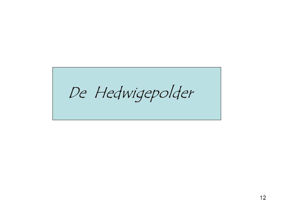 De Hedwigepolder