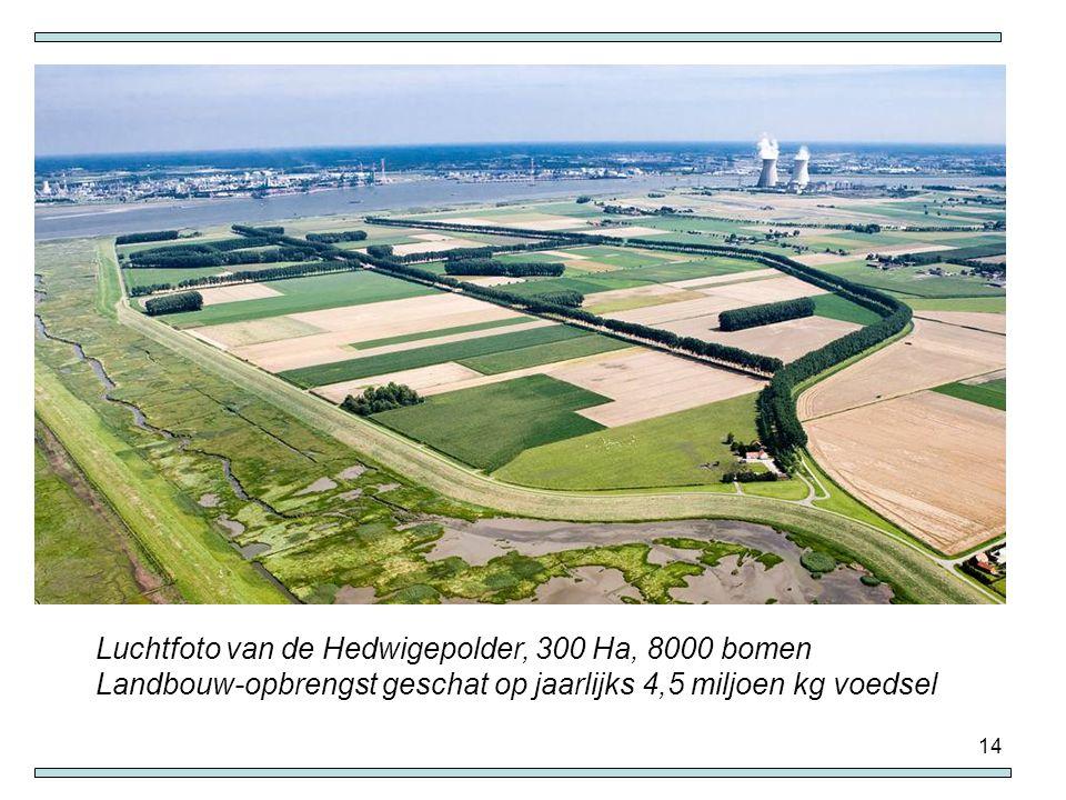 Luchtfoto van de Hedwigepolder, 300 Ha, 8000 bomen