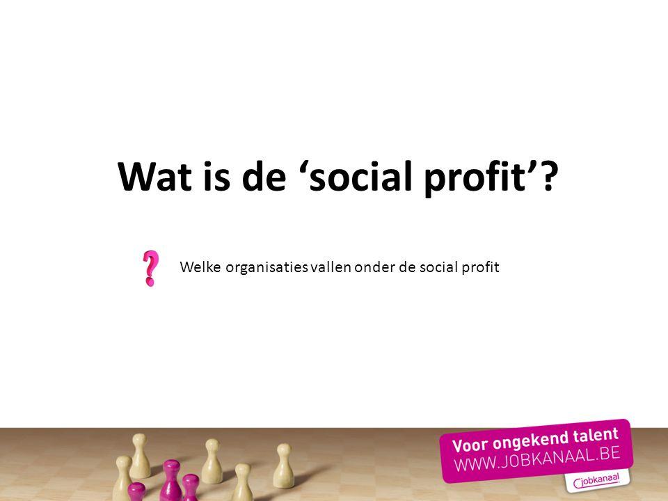 Welke organisaties vallen onder de social profit