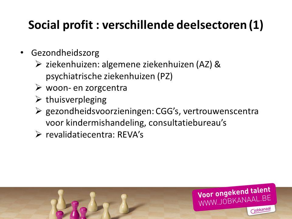 Social profit : verschillende deelsectoren (1)