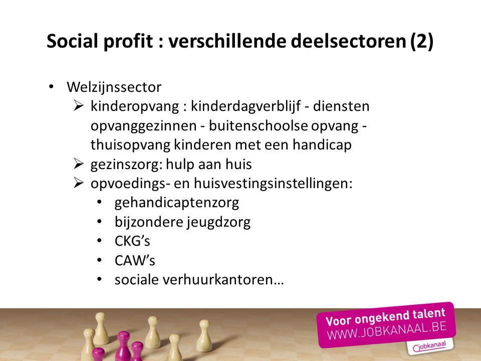 Social profit : verschillende deelsectoren (2)