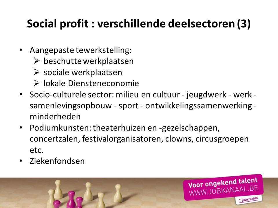 Social profit : verschillende deelsectoren (3)
