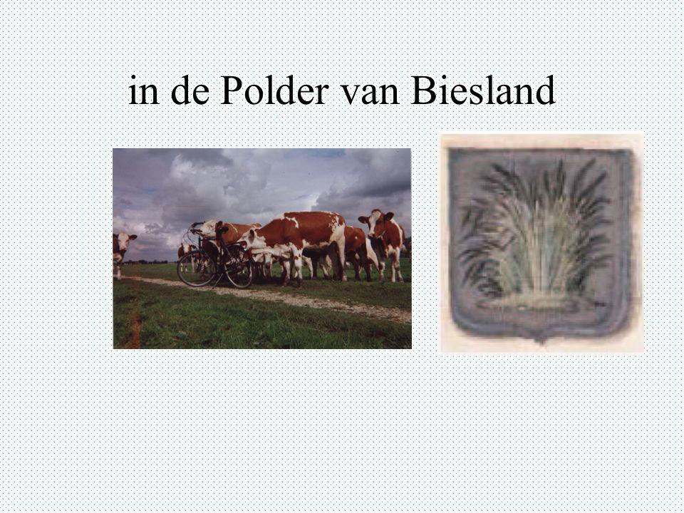 in de Polder van Biesland