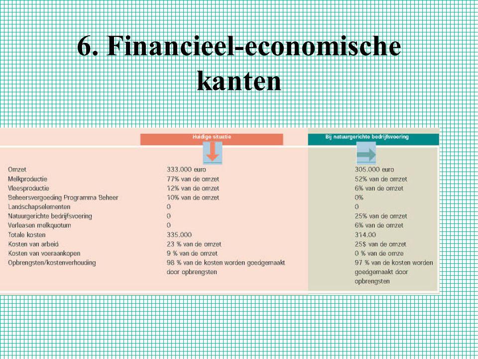 6. Financieel-economische kanten