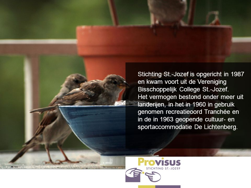 Stichting St.-Jozef is opgericht in 1987 en kwam voort uit de Vereniging Bisschoppelijk College St.-Jozef.