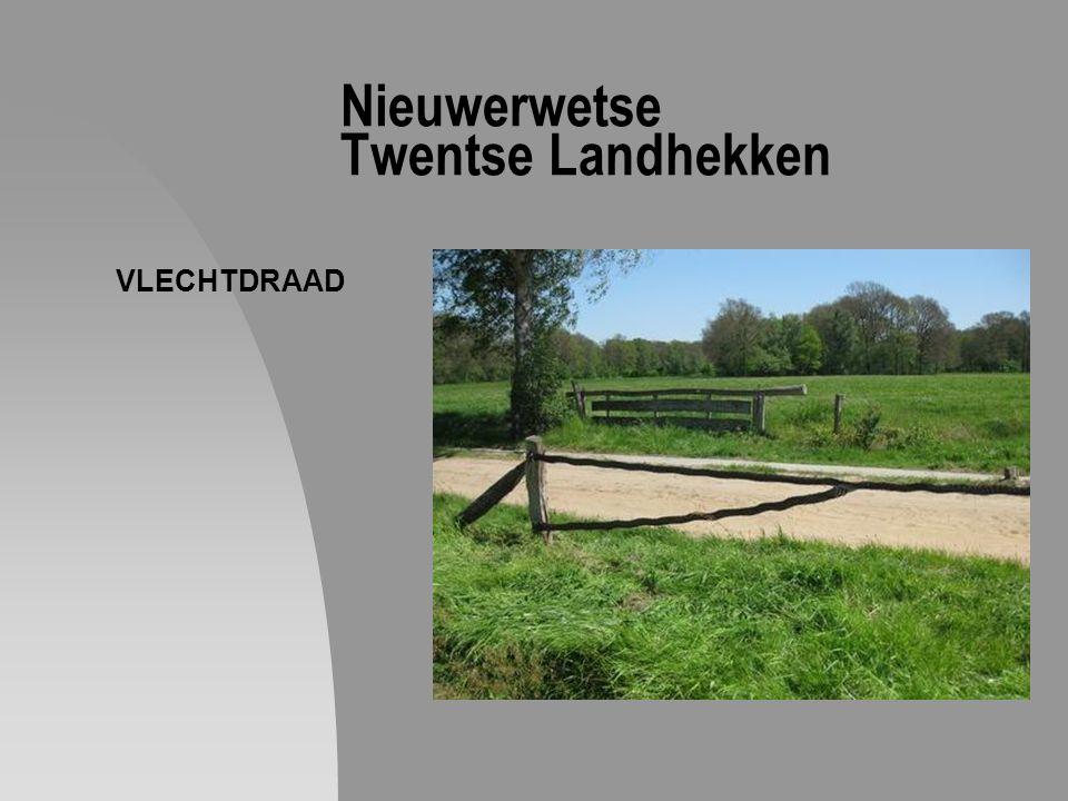 Nieuwerwetse Twentse Landhekken